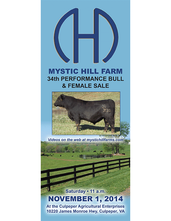 Mystic Hill Farm 34th Performance Bull and Female Sale