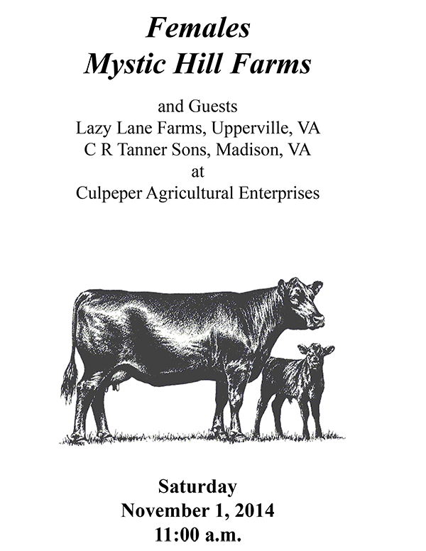 Mystic Hill Farms Females and Guests C R Tanner Sons and Lazy Lane Farms