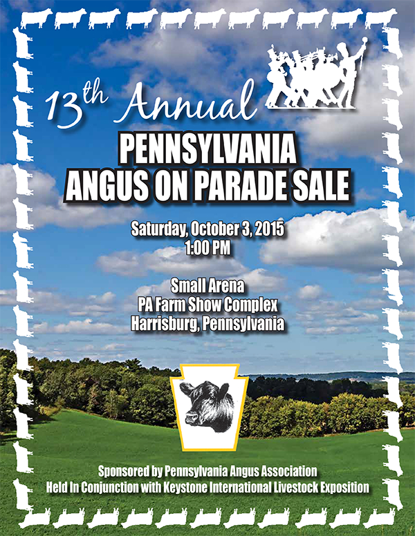 13th Annual Angus on Parade Sale