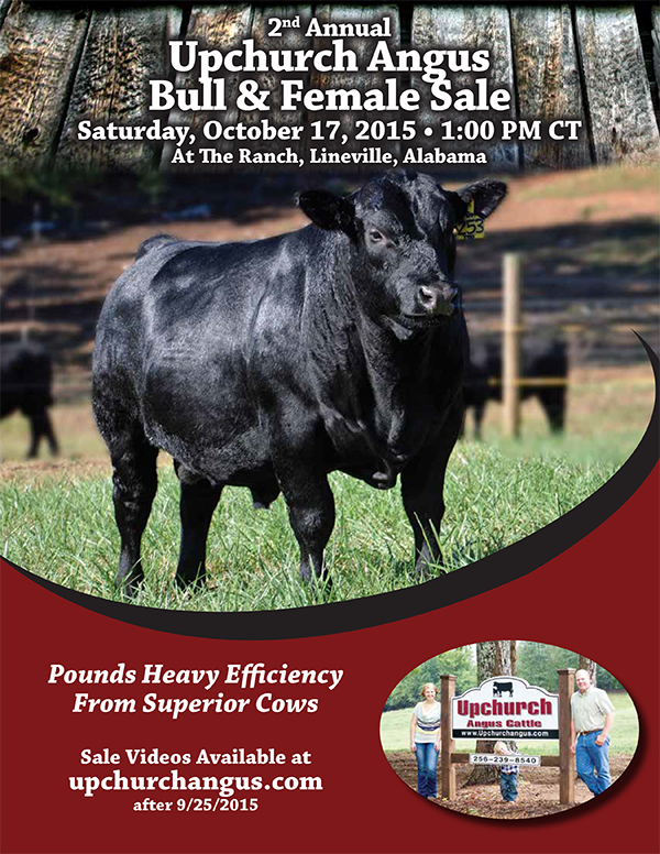 Upchurch Bull & Female Sale