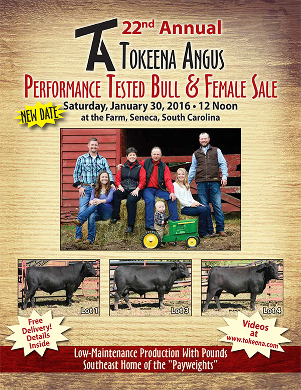 Tokeena Angus Performance Tested Bull & Female Sale