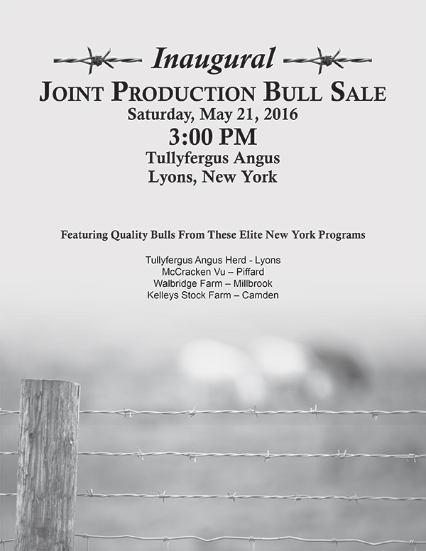 Joint Production Bull Sale