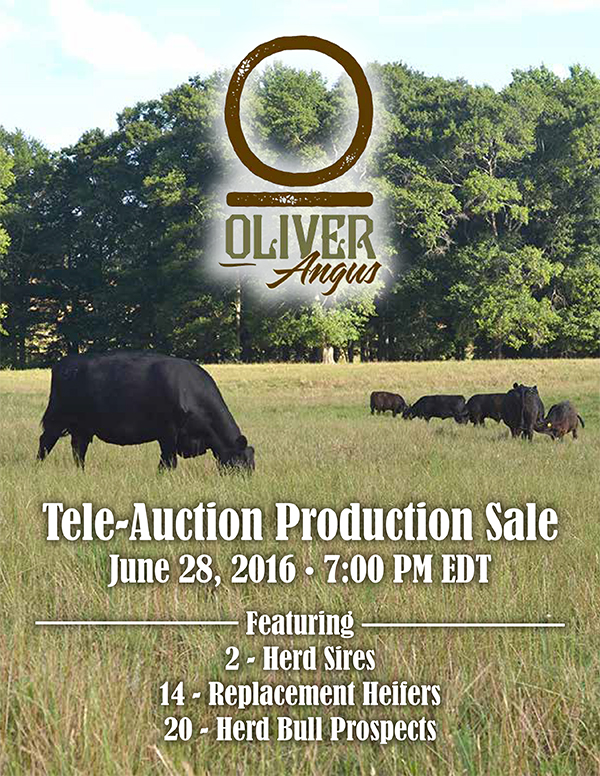 Oliver Production Sale