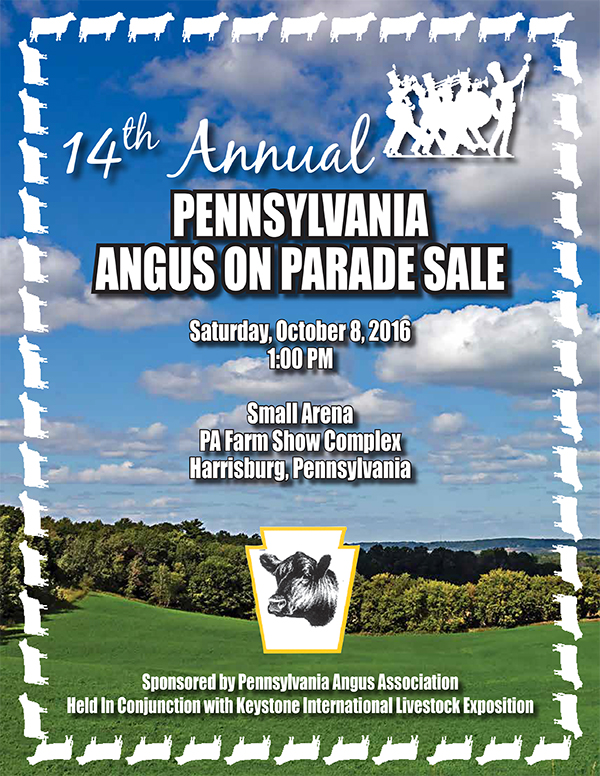 14th Annual Angus on Parade Sale
