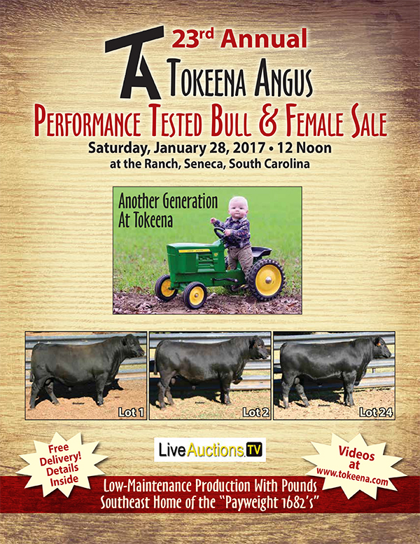 23rd Annual Tokeena Angus Performance Tested Bull & Female Sale