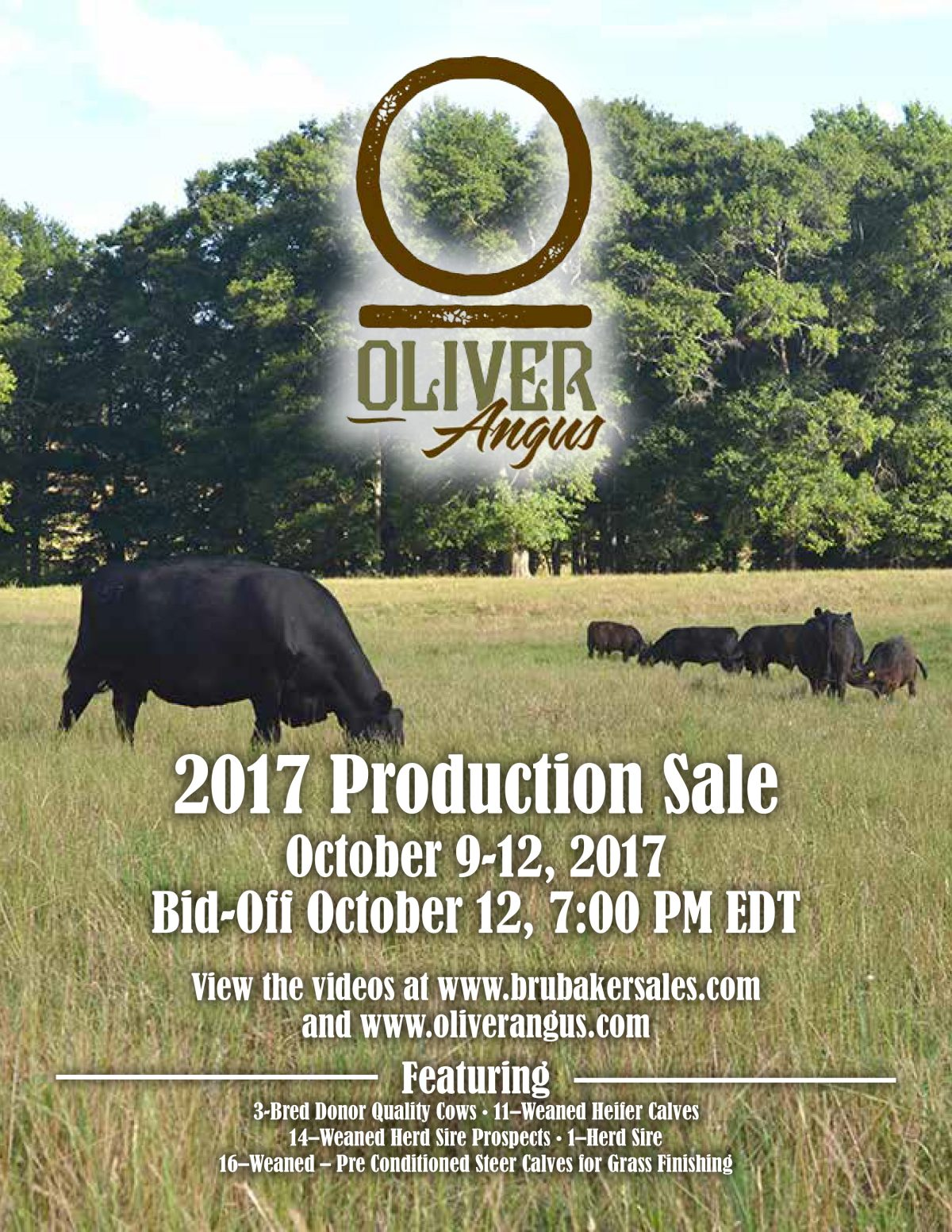 3rd Annual Oliver Angus Production Sale
