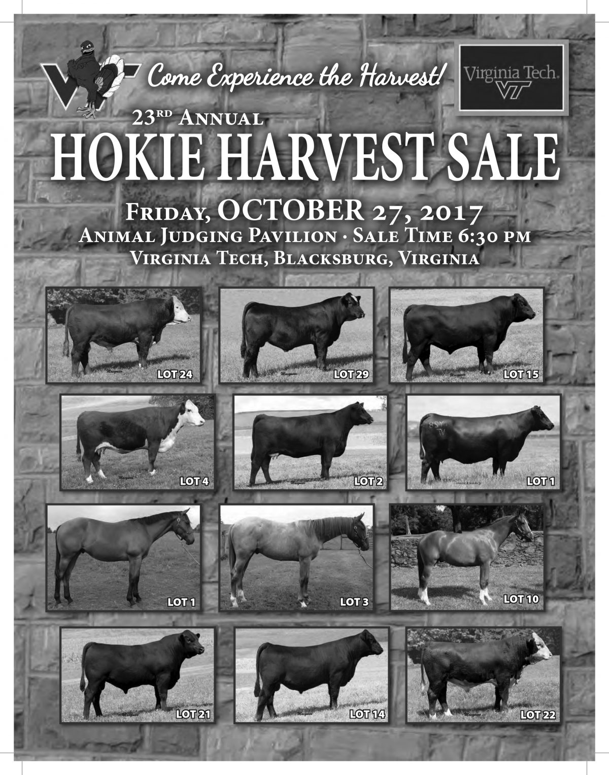 23rd Annual Hokie Harvest Sale