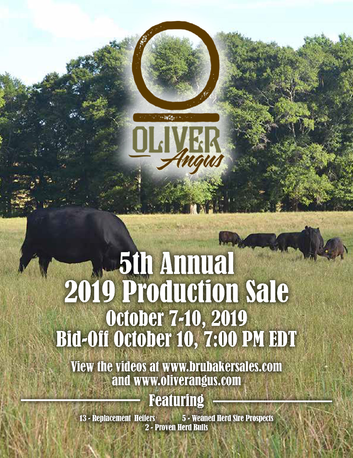 5th Annual Oliver Angus 2019 Production Sale