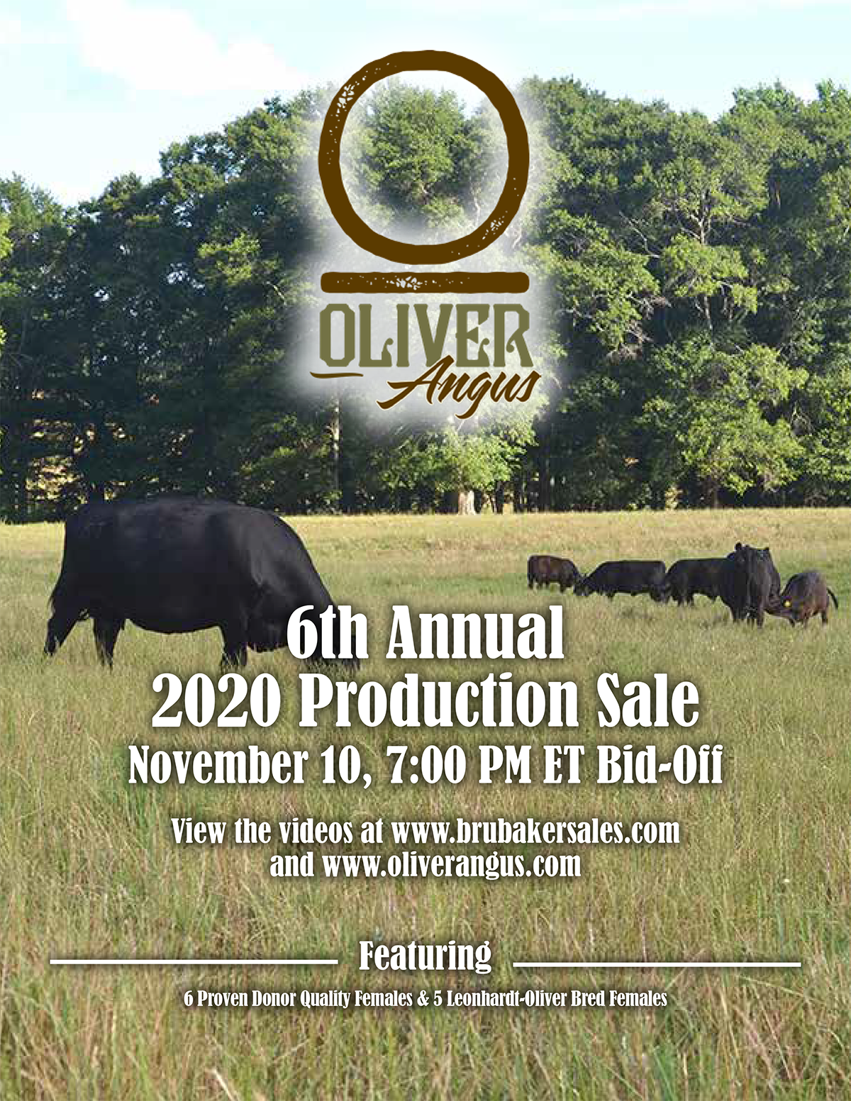 6th Annual Oliver Angus 2020 Production Sale